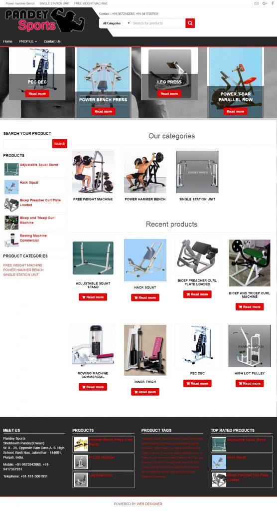 website-designer-web-development-developer-seo-services-professional-jalandhar-ludhiana-patiala-barnala-chandigarh-punjab