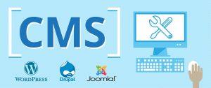 cms web designing,web development, designer in-jalandhar ludhiana punjab india